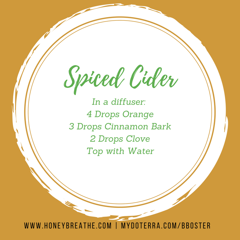 Spiced Cider for Diffuser by Bekka Boster