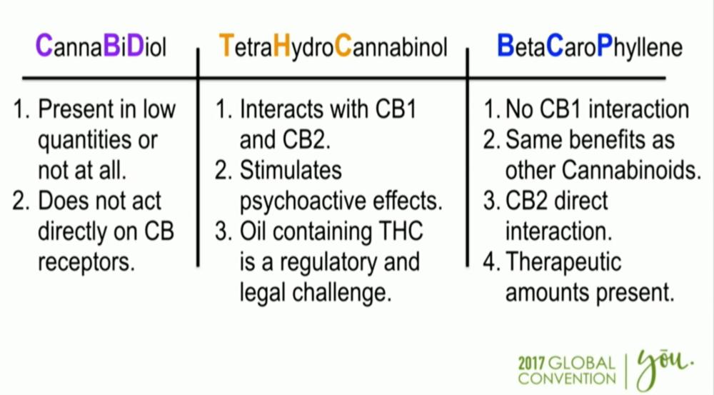 CBD v. THC. v. BCP