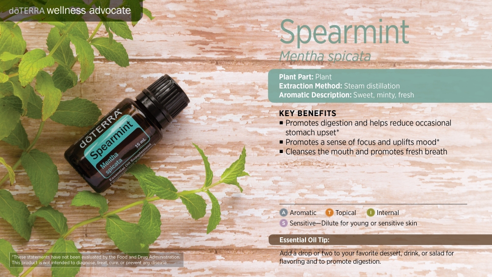 Pres Spearmint by HoneyBreathe