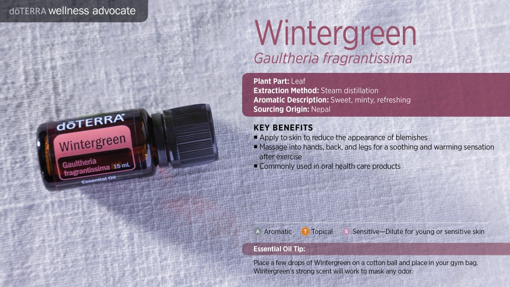 Pres Wintergreen by HoneyBreathe