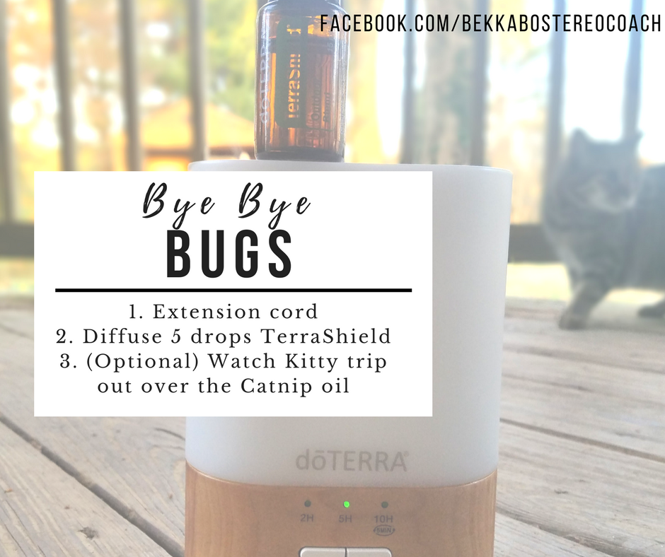 Bye Bye bugs diffuse TerraShield outside on the patio porch cats catnip